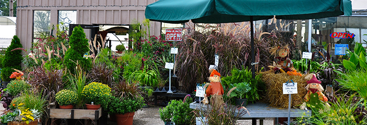 exterior of a garden centre with plants for sale