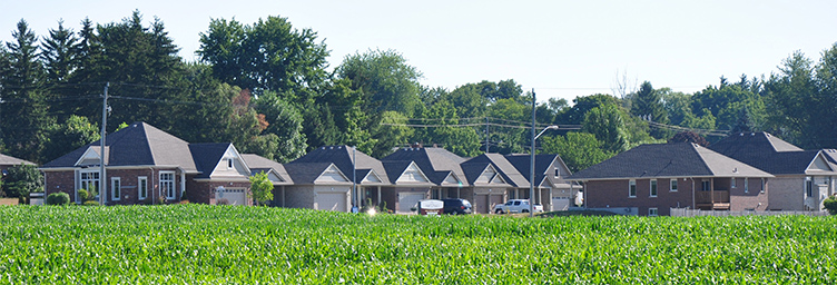 subdivision with corn field in foreground