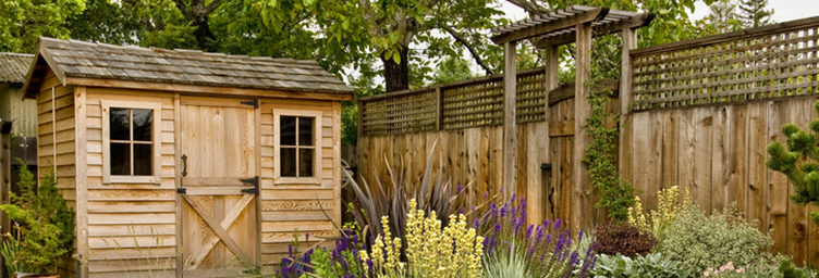 shed in landscaped yard
