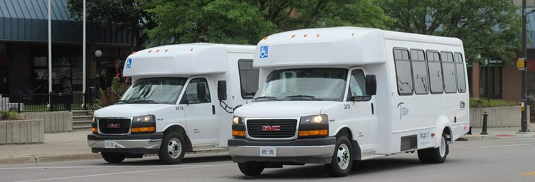 picture of TGO buses in Tillsonburg